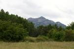 camps de conrreu a la Vall